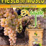 Plakat reklamujący Fiesta del Mosto. Foto: Ayuntamiento de Atajate.
